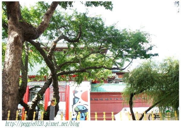 植物園下午茶02.jpg