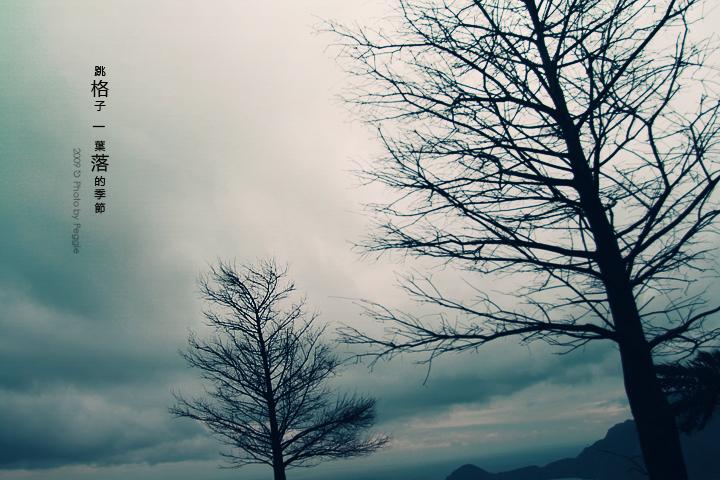 10/16 葉落的季節