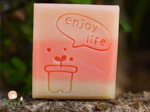 enjoy life盆摘1.jpg