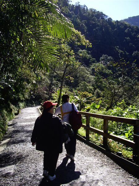 內洞森林遊樂區