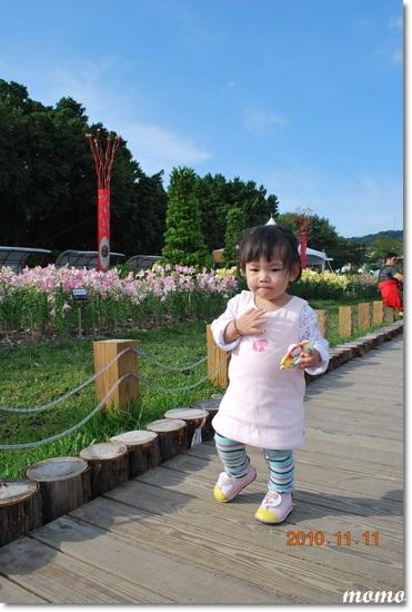 花博~新生區