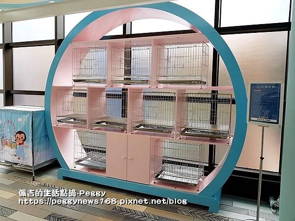 麗寶outlet-親子路線-摩天輪-寵物寄放區.jpg