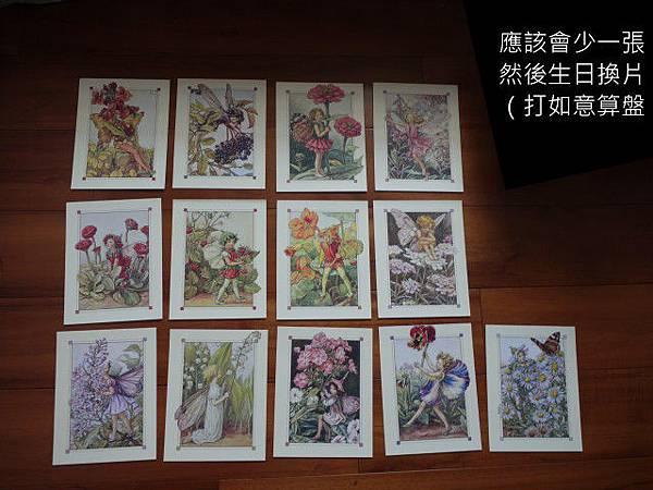 花仙子(2013/03/27交換)(全數預定)