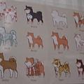 柴犬變化片