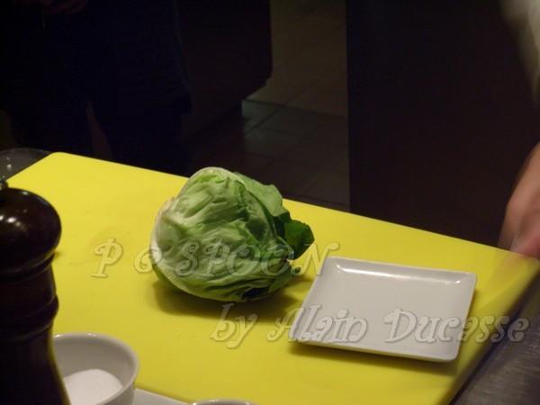 一月 -- 奶油蒿苣