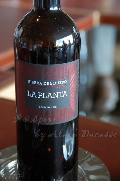 三月 -- 2006 La Planta - Arzuaga (Ribera del Duero - Espana)