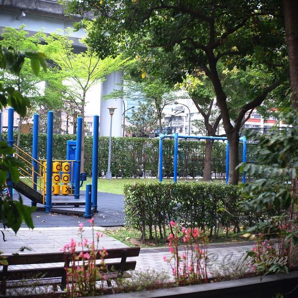 Coffee Sweet - 窗外的公園