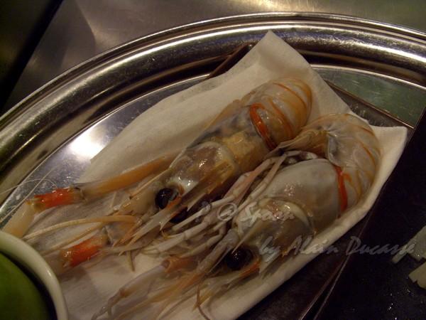 六月 -- 小螯蝦