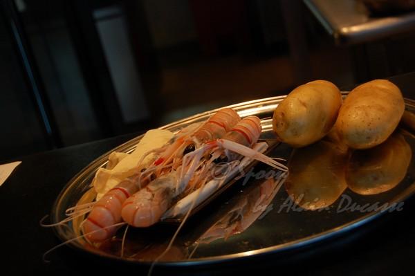 六月 -- 小螯蝦 (2)