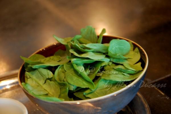 六月 -- 嫩菠菜