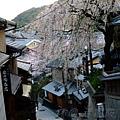 產寧坂 -- 櫻花
