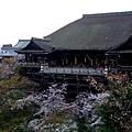 清水寺 -- 清水舞台 (2)