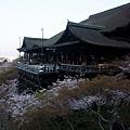 清水寺 -- 清水舞台 (5)