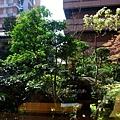 Iyemon Salon - 中庭園林