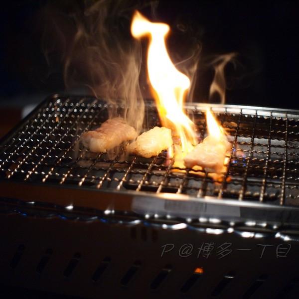 博多一丁目 -- 鹽燒牛大腸