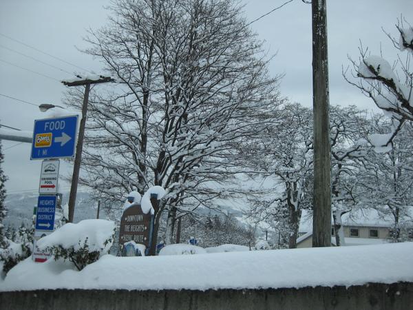 SNOW VIEW-18
