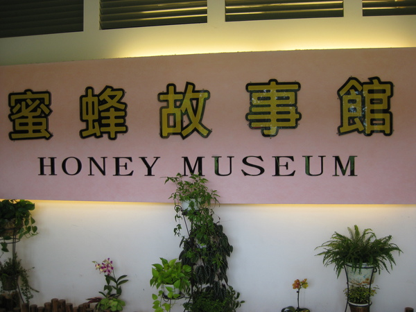 HONEY MUSEUM-11
