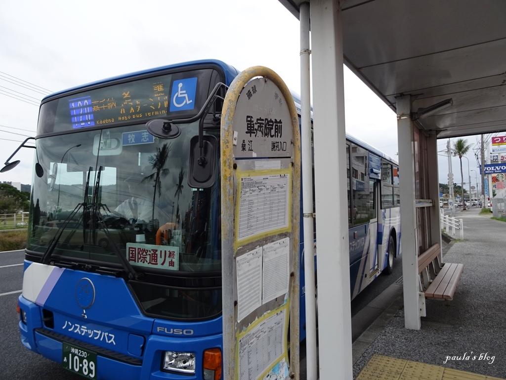 DSC04310.JPG