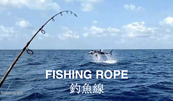 AMWC_Fishing Rope.png