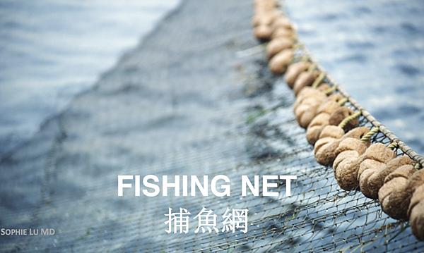 AMWC_Fishing Net.png