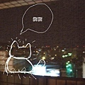 貓半夜跳上陽台