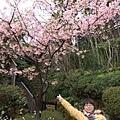 2007_02230160.jpg