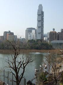 2007_02230607.jpg