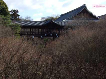 東福寺的通天橋(要門票哦)