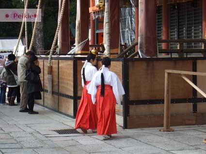 八坂神社裡的巫女