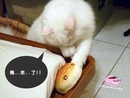 麵包滑鼠墊咩咩3.jpg