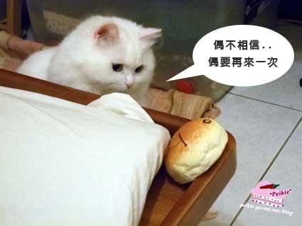 麵包滑鼠墊咩咩5.jpg