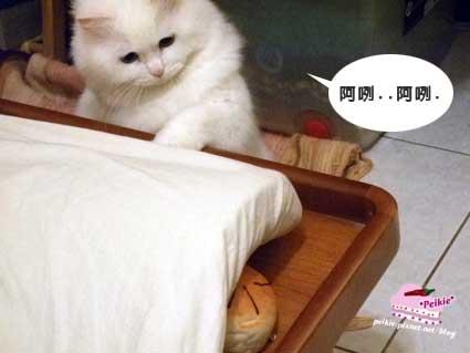麵包滑鼠墊咩咩8.jpg