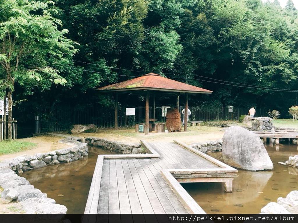 福岡縣京都町野鹿、星星、蛇渕露營場