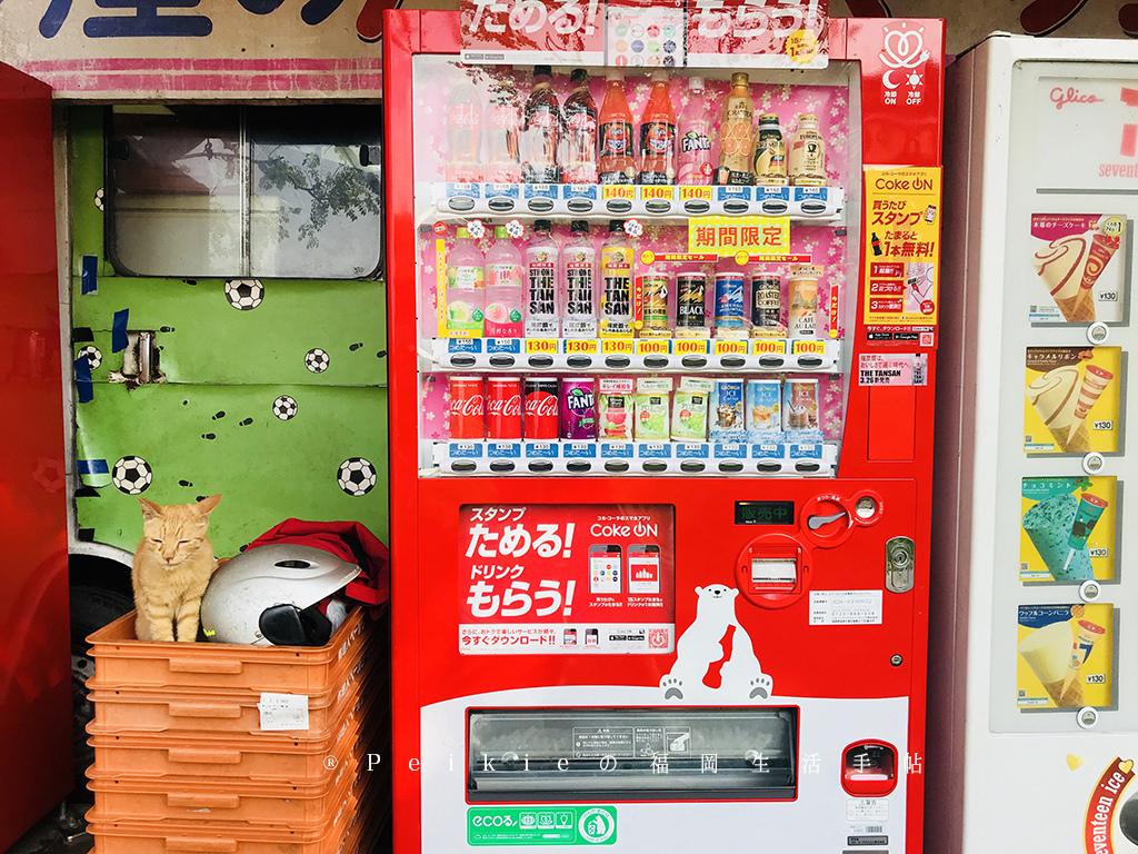 福岡地點最高的熱狗堡店的背後故事。