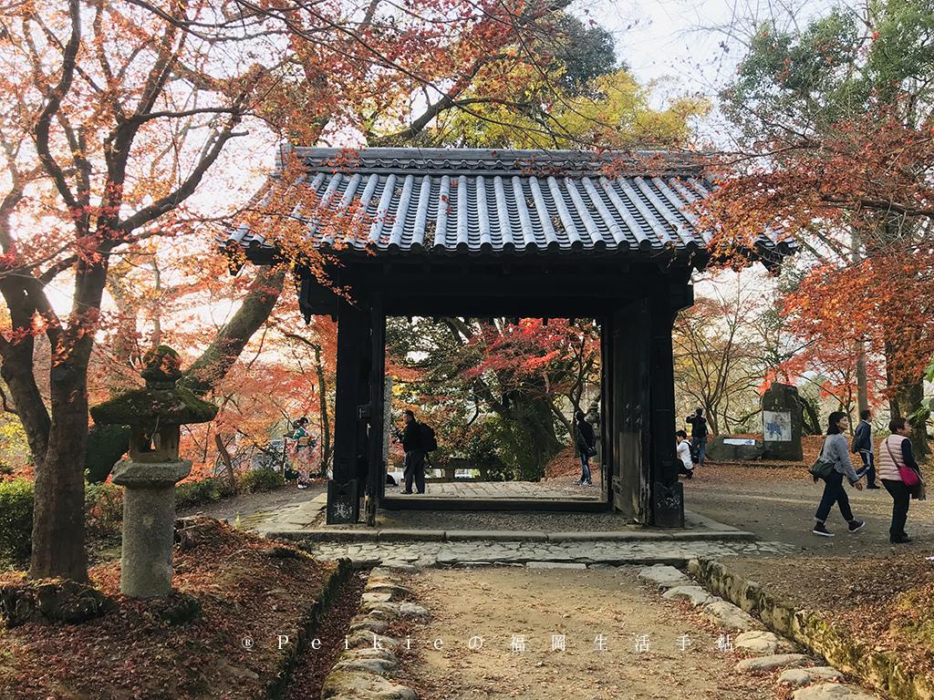 福岡・朝倉紅葉狩り・秋月城跡