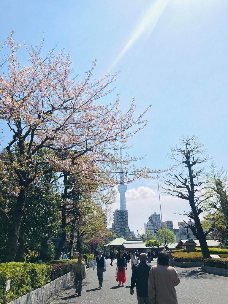 東京・淺草印象