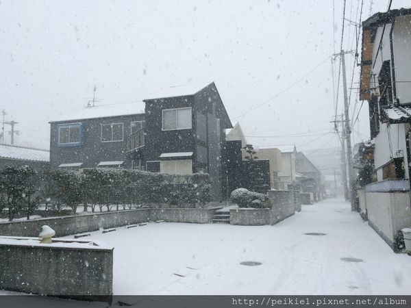 福岡幾月會下雪?