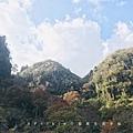中津市的深耶馬溪,景點一目八景
