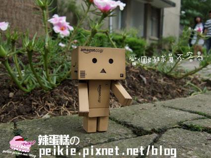 紙箱人流浪記7.jpg