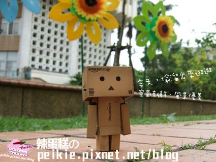 紙箱人流浪記.jpg