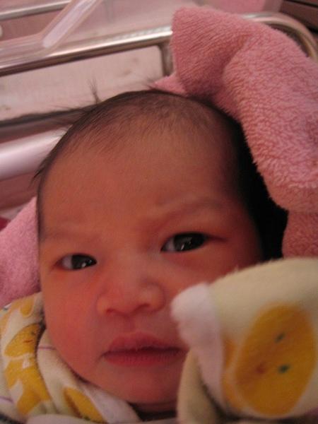 20081107母嬰同室 (2)