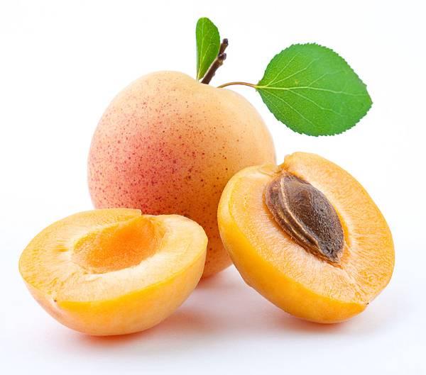 apricot-03.jpg