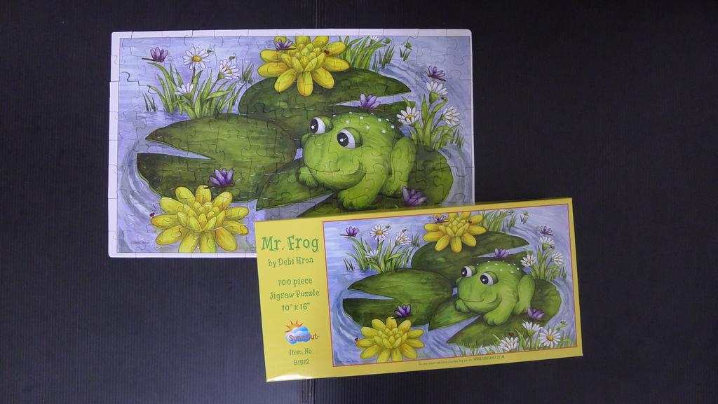 22Mr. Frog.jpg