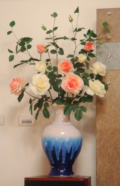大欉玫瑰花.jpg