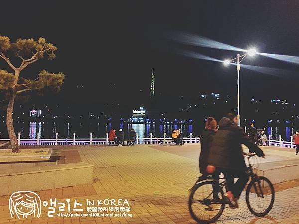 全羅南道-5D麗水鐘浦海洋公園-浪漫包裝馬車(夜市)