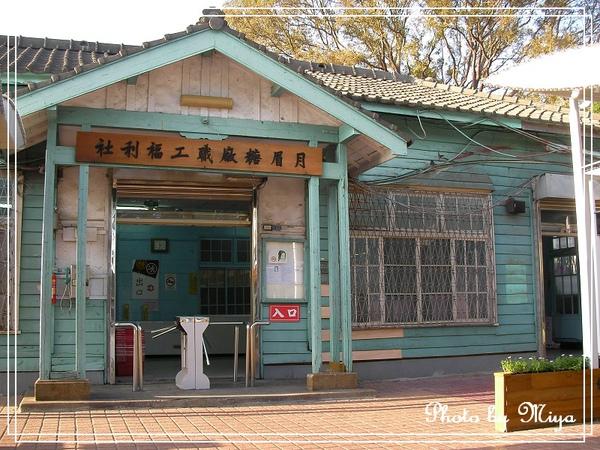 通宵花海SANY0593.jpg