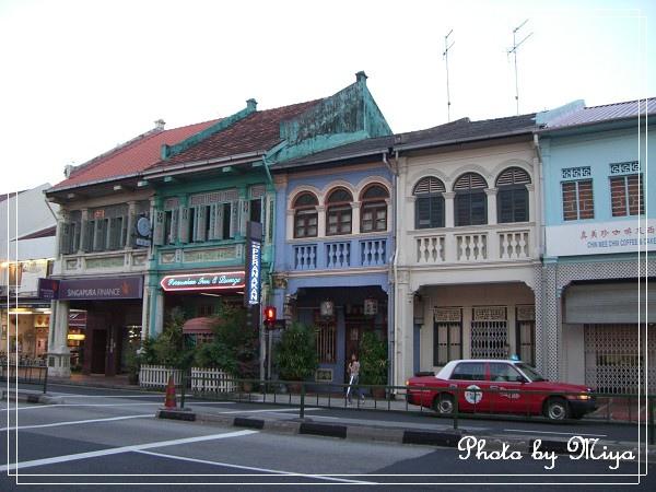 新加坡CIMG2993.jpg