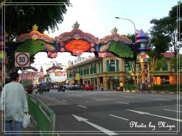 新加坡CIMG3028.jpg