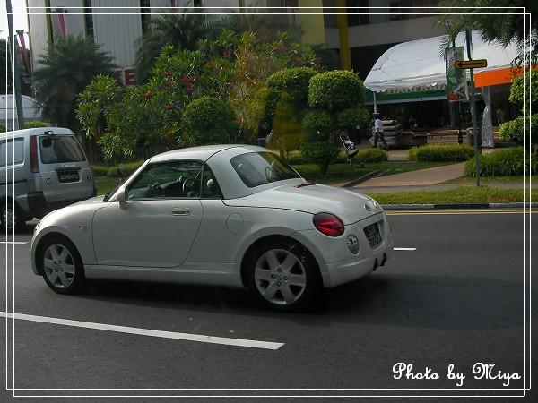 新加坡SANY0202.jpg