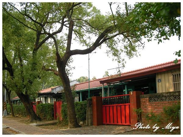 中興新村SANY1062.jpg